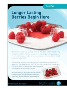 FruitPad Flyer US